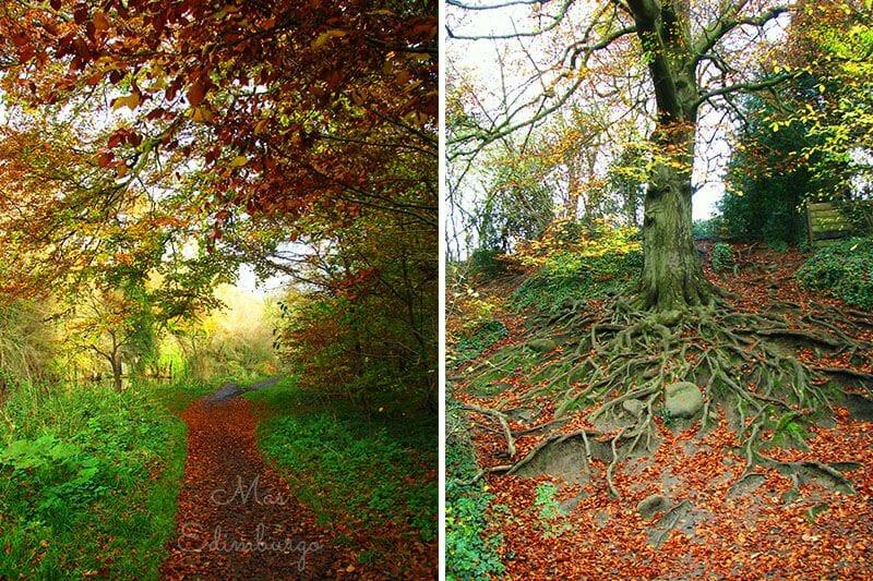 La isla de Cramond y el otoño en Edimburgo