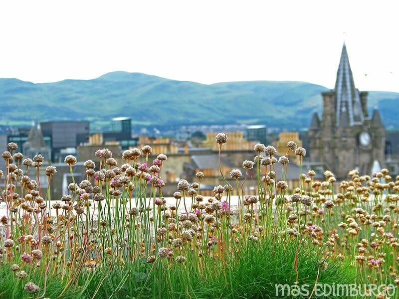 Terraza del Museo Nacional de Escocia Edimburgo (2)