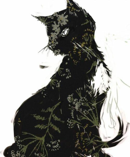 Mitología escocesa Cat Sith