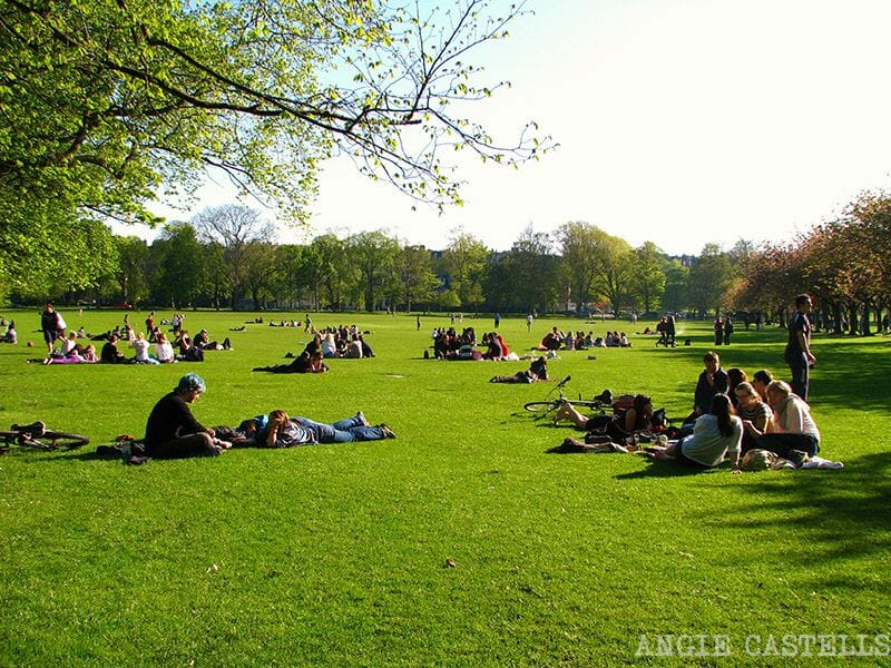 Primavera en Edimburgo Meadows