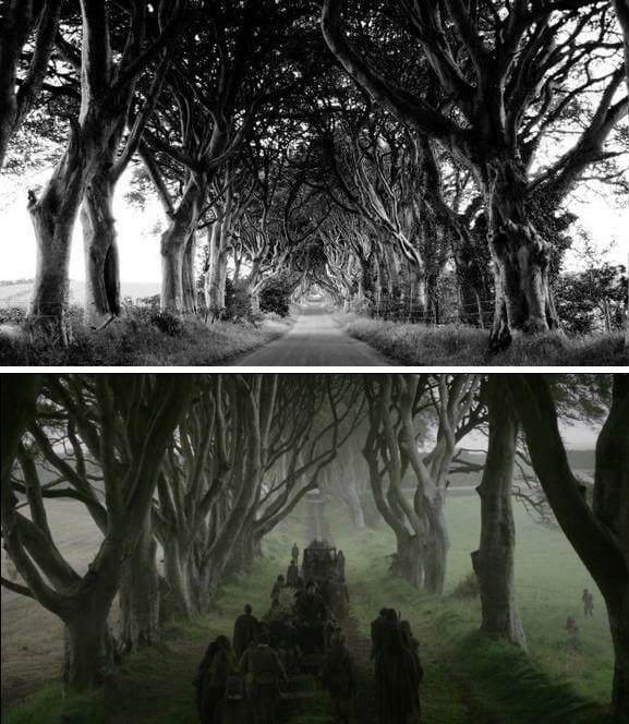 Dónde se rodó Juego de Tronos Dark Hedges Arya