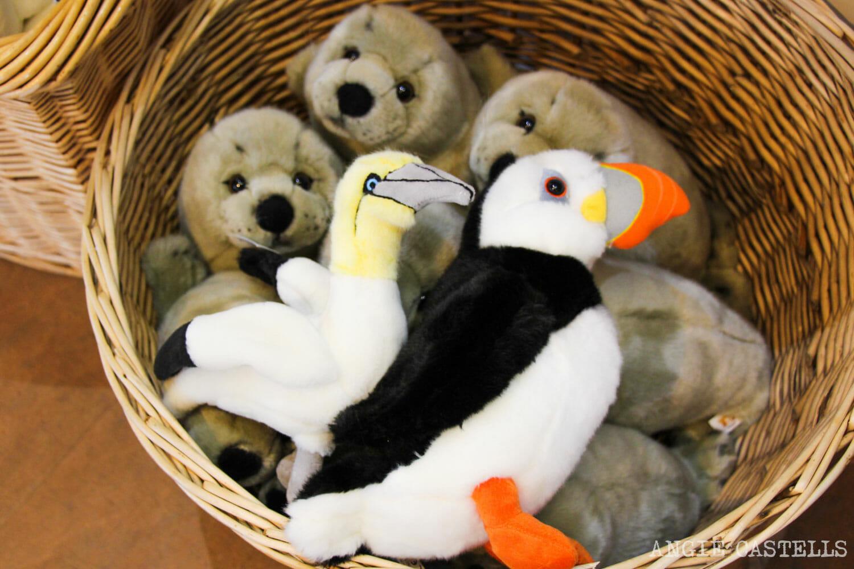 Regalos de Escocia originales - Puffins, focas y alcatraces