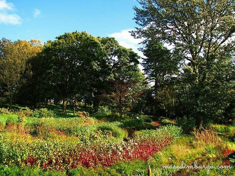 Un dia en el Jardin Botanico de Edimburgo  Mas Edimburgo (9)