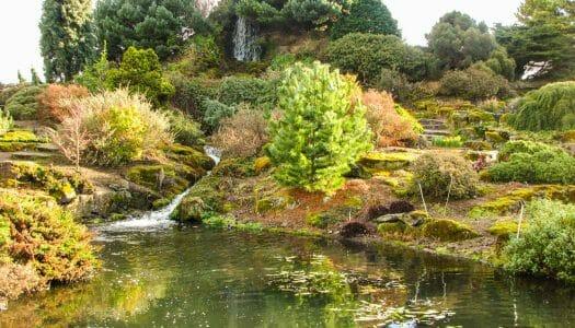 El Jardín Botánico de Edimburgo y el parque de Inverleith