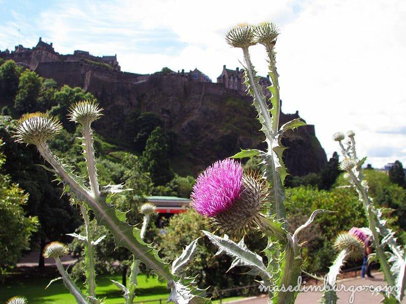St Andrews Day, el dia nacional de Escocia Mas Edimburgo 2