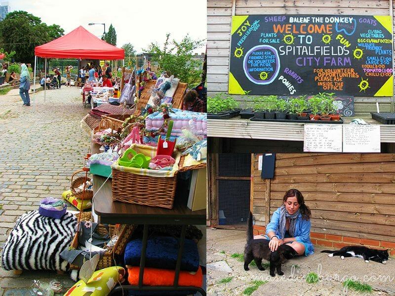 Spitalfields City Farm, una granja urbana en Londres Mas Edimburgo (6)