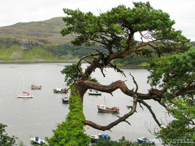 Visitar Portree, en la Isla de Skye - Excursión por Portree