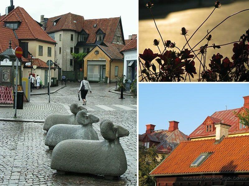 Un dia en la ciudad de Visby Mas Edimburgo (5)
