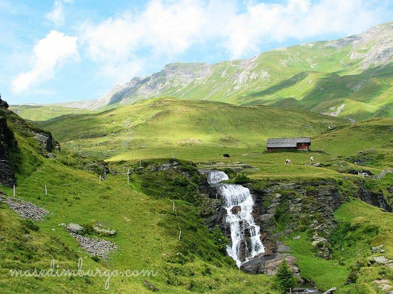 Mas Edimburgo Lago Bachalpsee Suiza 3