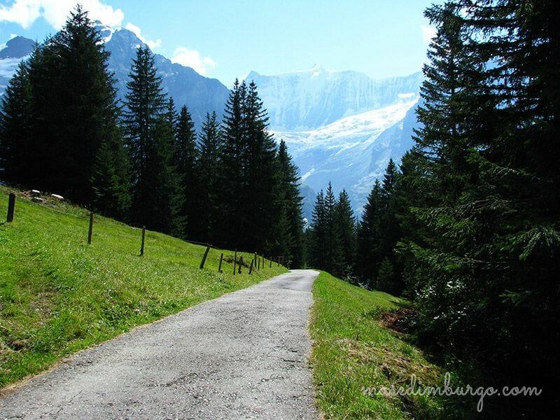 Lago Bachalpsee Suiza Mas Edimburgo3