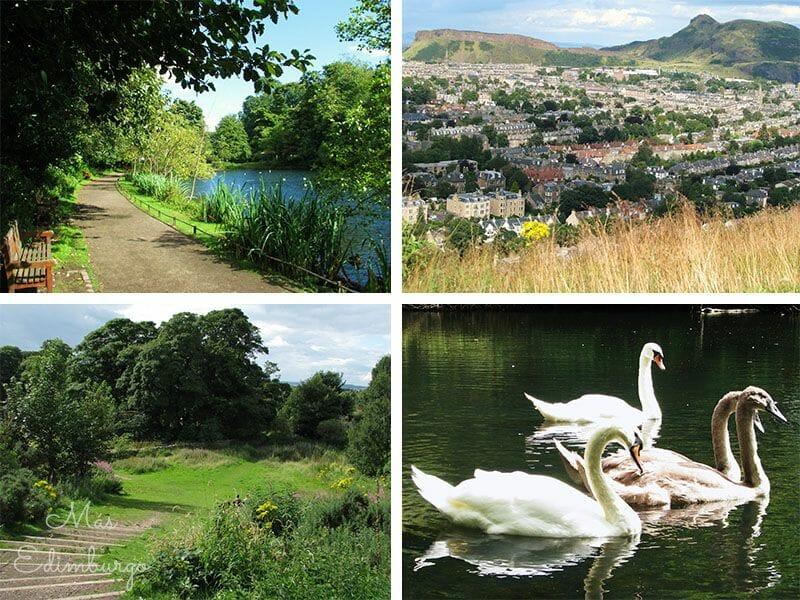 Los mejores miradores de Edimburgo: Blackford Hill