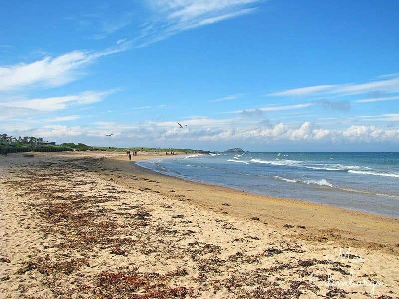 Visitar North Berwick - La isla del tesoro o Fidra