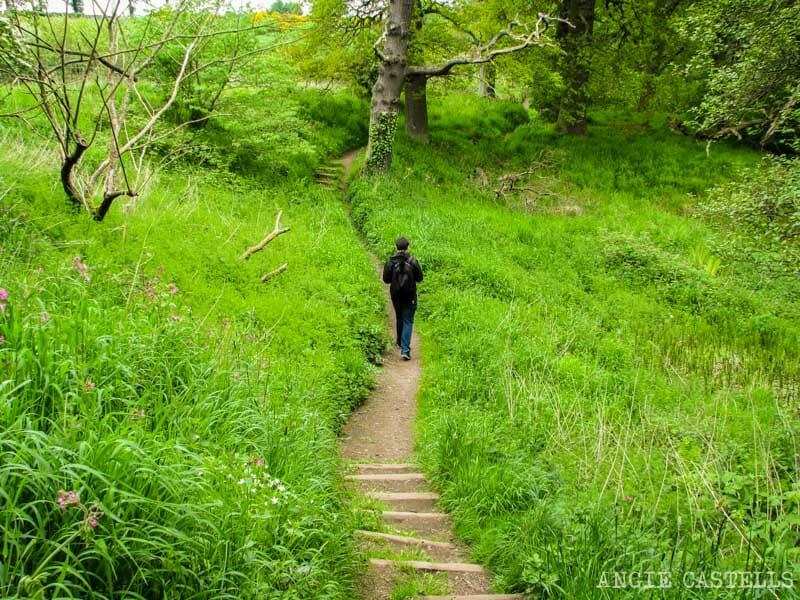 Excursión al Roslin Glen y la capilla de Rosslyn desde Edimburgo