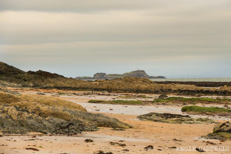 Qué ver en North Berwick - La isla de Fidra