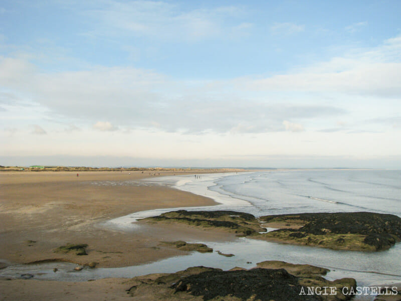 Que-ver-St-Andrews-Playa-West-Sands-Excursion-desde-Edimburgo