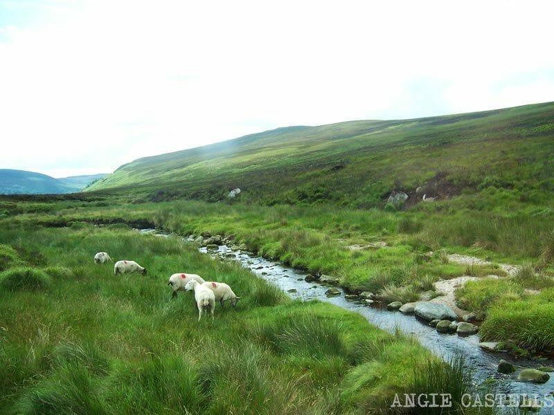 Ruta-por-Irlanda-Wicklow