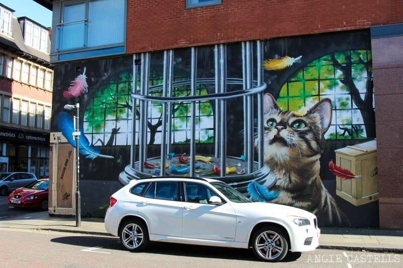 Ruta de grafitis y arte urbano de Glasgow: pájaros y un gato