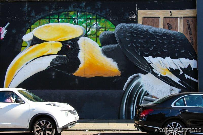 Ruta de grafitis y arte urbano de Glasgow: pájaros y gato