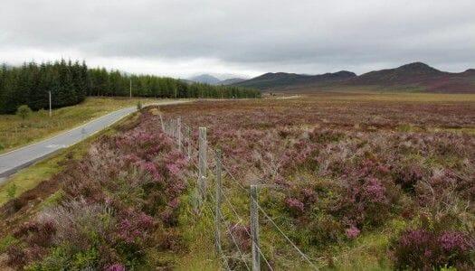 Las Highlands de Escocia – Ruta de 3 días (por libre)