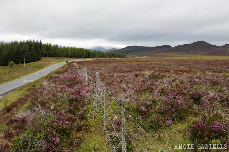 Ruta por las Highlands de Escocia Tierras Altas 2 dias-2
