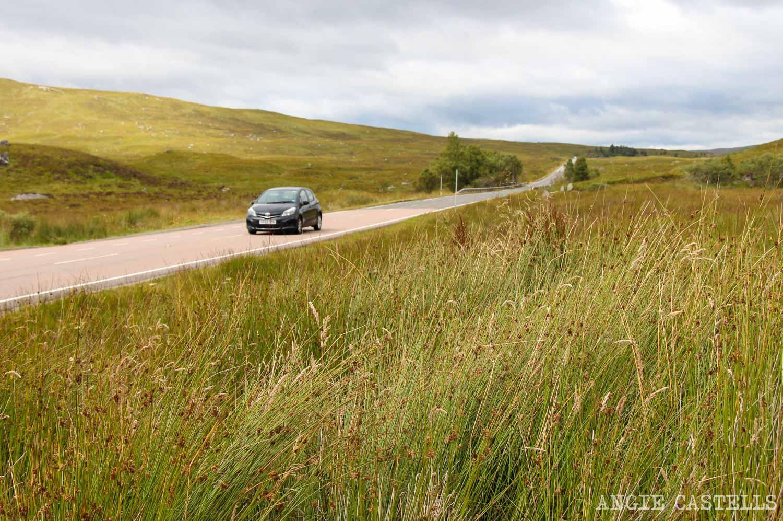 Conducir por la izquierda y conducir por Escocia-1