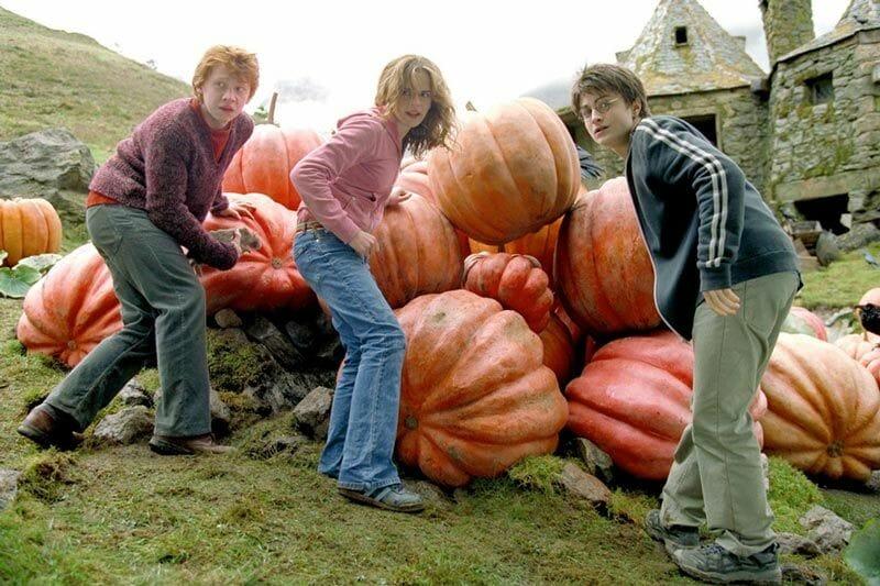 Harry-Potter-y-cabaña-de-Hagrid-Glencoe-Escocia
