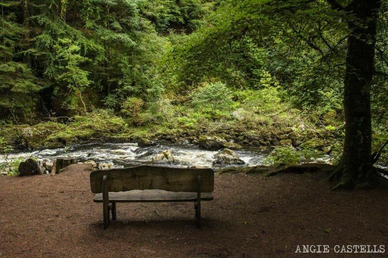 Ruta por el Hermitage de Dunkeld, excursión por Escocia