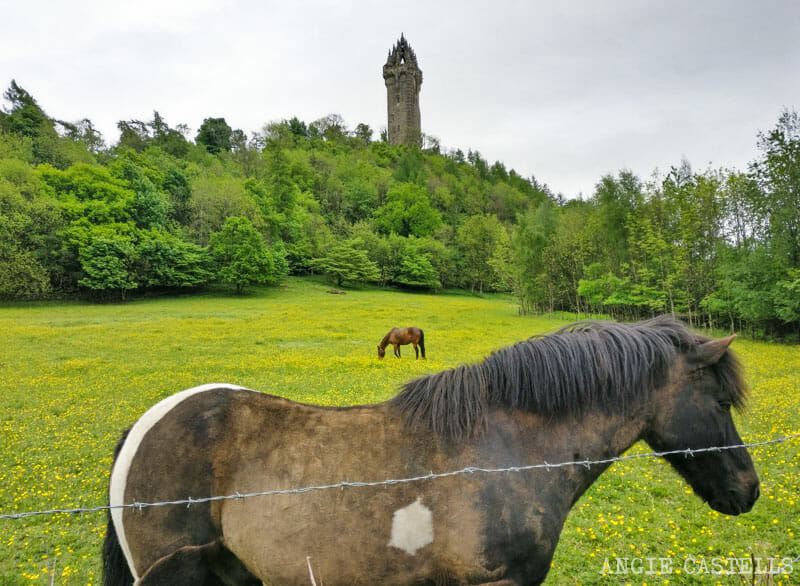 Guía de Stirling: qué ver en un día - Wallace Monument