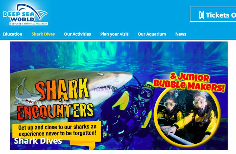 Turismo-responsable-en-Escocia-acuarios-tiburones