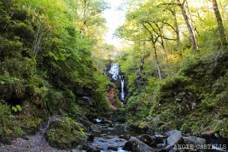 Las mejores excursiones para el otoño en Escocia - Queen Elizabeth Forest Park Trossachs