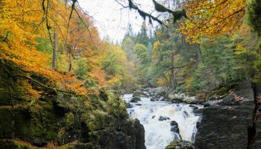 El Hermitage de Dunkeld, bosques mágicos en Escocia