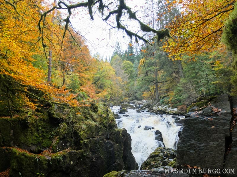 Las mejores excursiones para el otoño en Escocia - Bosques del Hermitage de Dunkeld