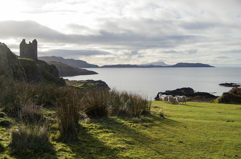 Qué hacer en Oban - Visitar la isla de Kerrera