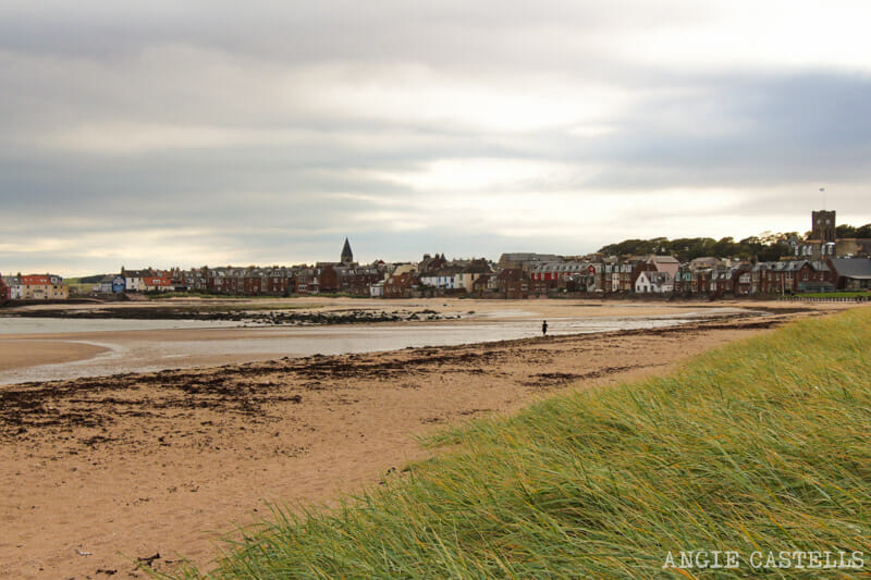 Excursion desde Edimburgo a East Lothian - Visitar North Berwick