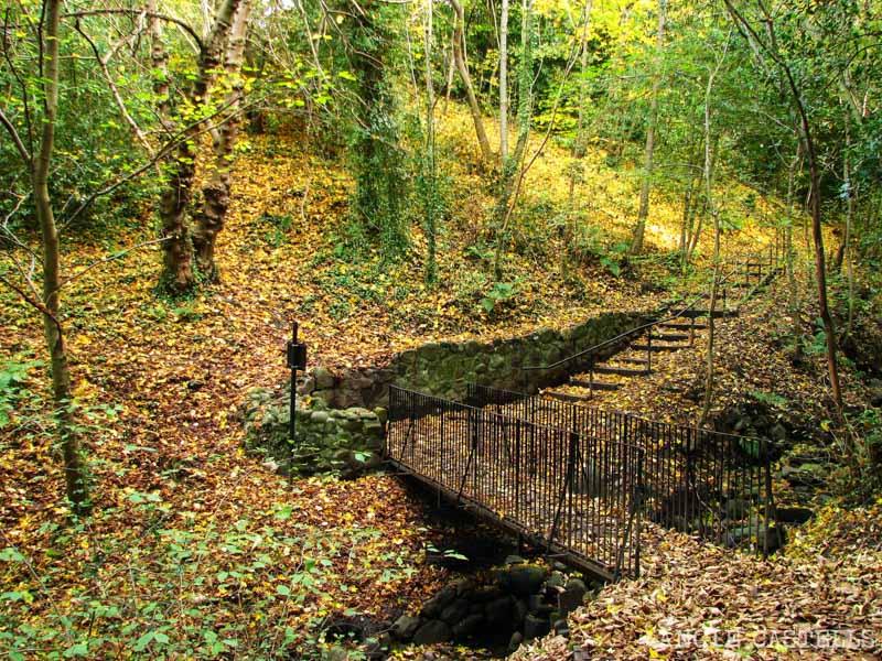 Qué ver en South Queensferry - Ferry Glen en otoño en Escocia